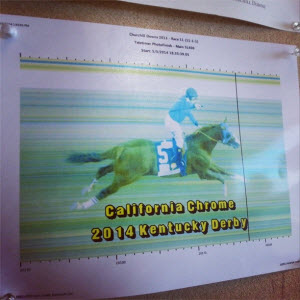 California Chrome wire photo