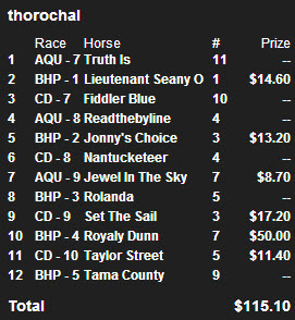 Steve Wolfson Sr. $10K Saturday Nov 23 Picks
