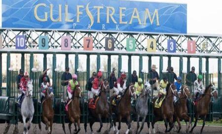 Gulfstream Park Picks & Tips