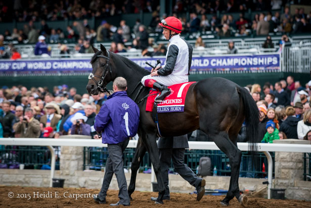 The Breeders Cup In Photos Saturday