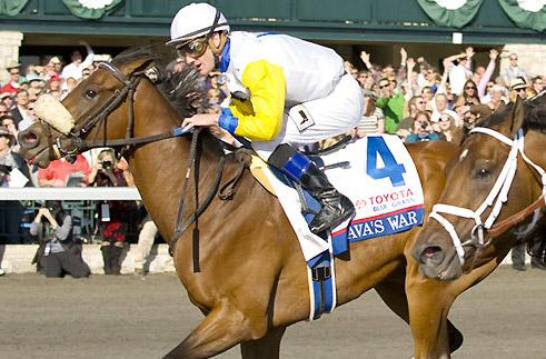 Javas War Bluegrass stakes