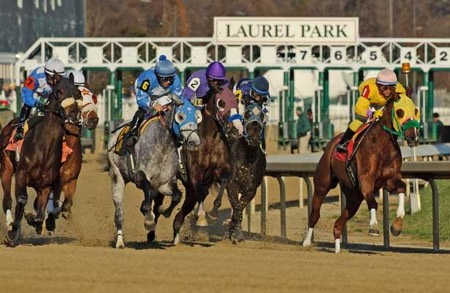 Laurel Park picks & tips for free