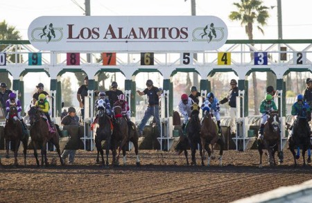 Los Alamitos Picks - QH & TB