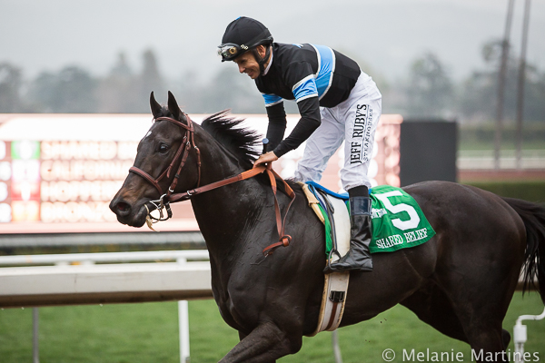 Shared Belief Triple Crown Trail