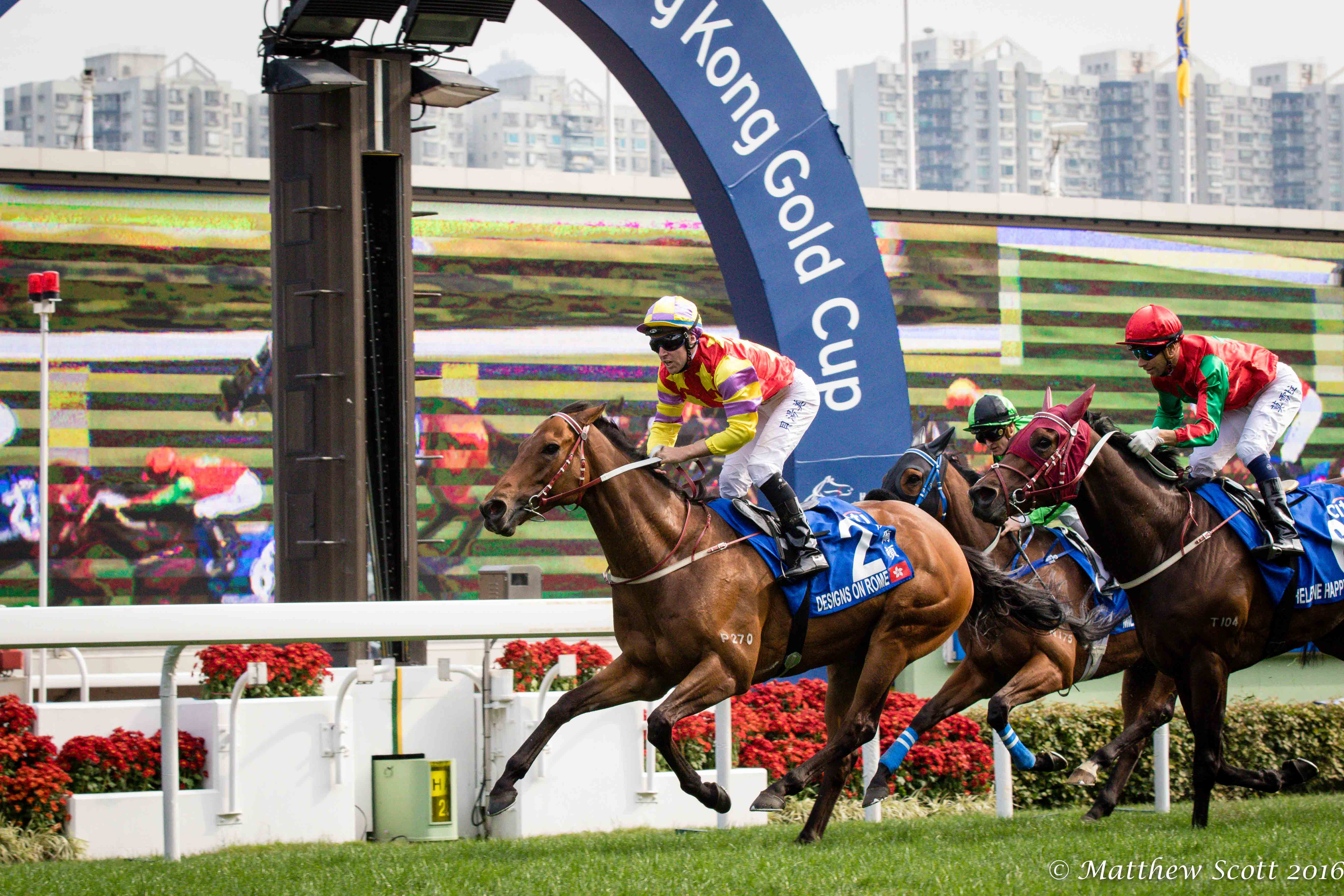 Designs on rome repeats in hong kong gold cup 55000 furlongs to it had been a rough season for the 6 year old gelded son of holy roman emperor after a failed trip to dubai last spring and coming up flat in the apqeii falaconquin
