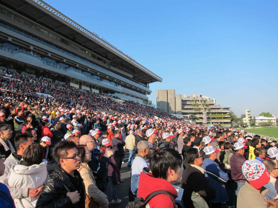 The crowd at Sha Tin