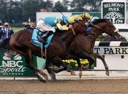 Union Rags Belmont Stakes