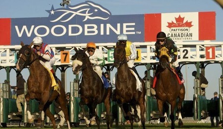 Woodbine Racing Picks & Tips