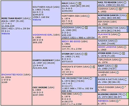 Verrazano Pedigree Chart