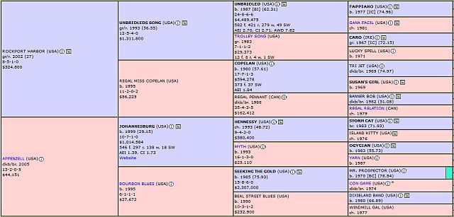 Rise Up horse pedigree profile