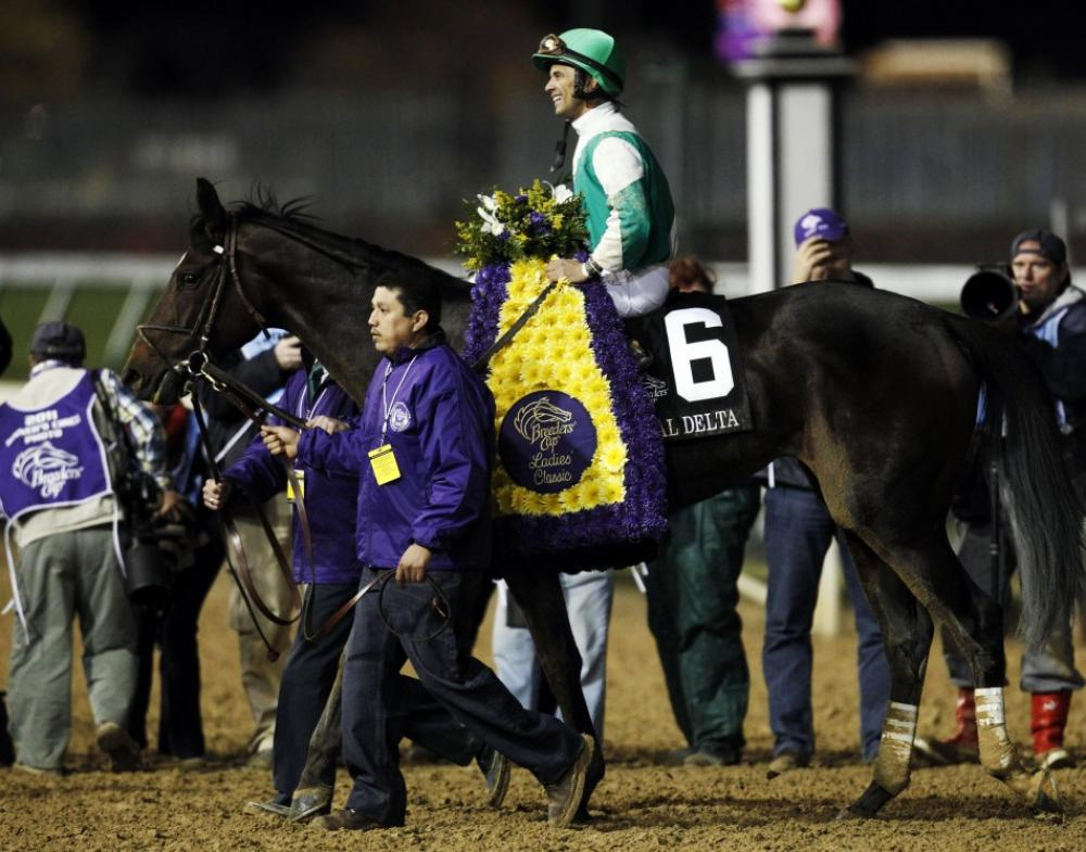 Royal Delta Breeders Cup Distaff